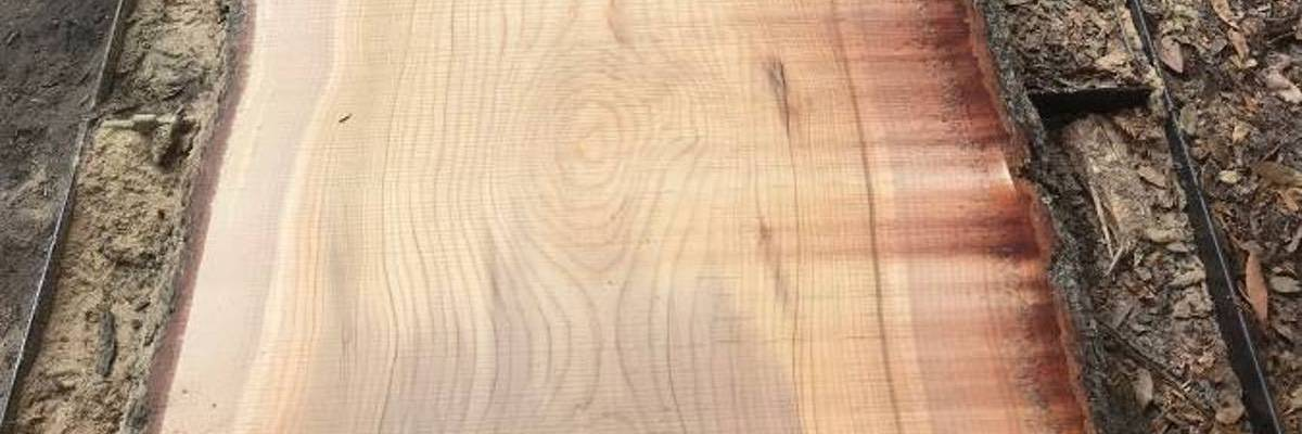Permalink to: Cedar Natural Edge Slabs For Sale