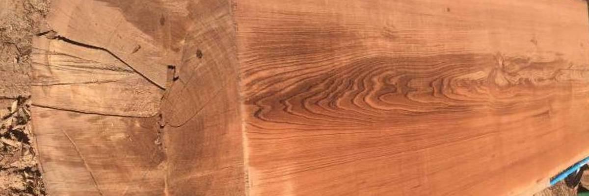 Santa Cruz Old Growth Natural Edge Redwood Slabs