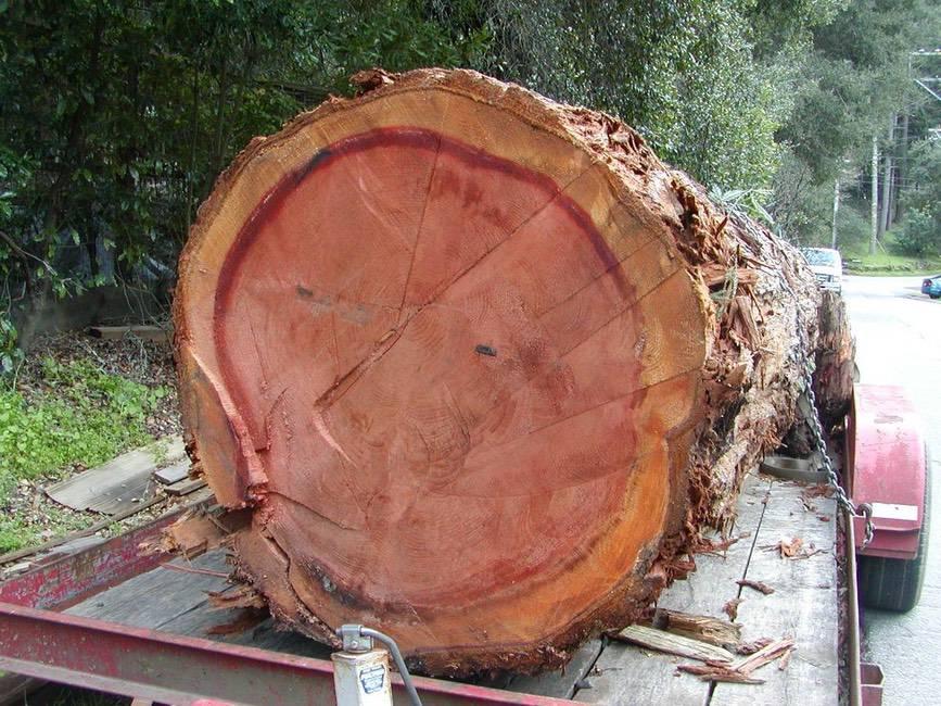 Santa Cruz Redwood Lumber