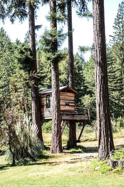 Santa Cruz Redwood Siding 1x8, 1x10 and 1x12